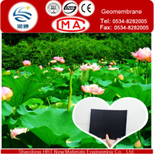 HDPE Sheet 2.0mm 100% Virgin Geomembrane for Seepage Proofing and Water Proofing for Lotus Pool pictures & photos