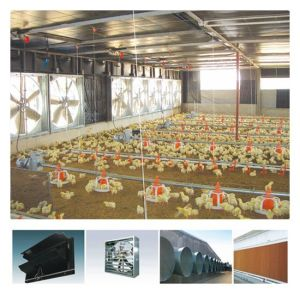 Full Set Poultry Farm Equipment for Chicken Production pictures & photos