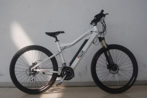 Mountain Electric Bike TDM1201z pictures & photos