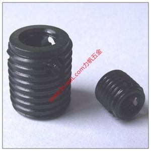 Plunger Tube Retainer Screw/Hexagon Socket Set Screw pictures & photos