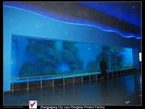 Acrylic Panorama Window Plexiglass Panel pictures & photos