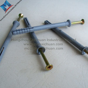 Galvanized Steel Screw Plastic Anchor pictures & photos