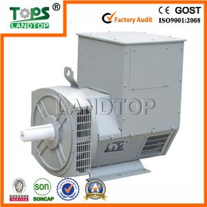 TOPS STF Series 1000kw Brushless AC Alternator pictures & photos