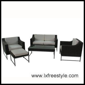 2014 SGS Pass Wicker Furniture / Outdoor Furniture (SF-007)
