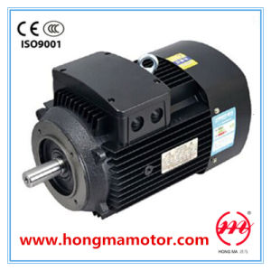 High Efficiency Water Pump Motor (160L-2-18.5KW) pictures & photos