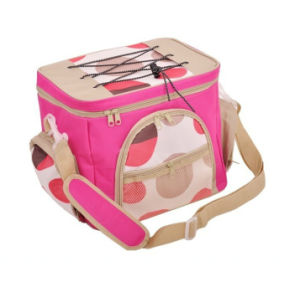 New Design High Quality Nylon Cooler Bag pictures & photos