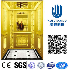 AC-Vvvf Drive Home Elevator with German Technology (RLS-225) pictures & photos