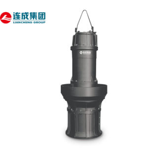 Submersible Mixed Flow or Axial Flow Pump pictures & photos