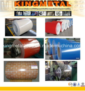 Pre Painted Steel Coil and Sheet pictures & photos
