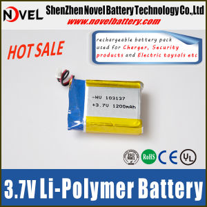 Small Lithium Polymer Battery 1200mAh 103137