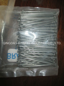 Outstanding Performance Common Nails Wire Nails Polished and Galvanized with Sizes 3/8 Inch to 6 Inches pictures & photos