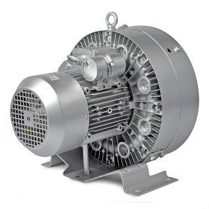 Industrial Vacuum Pump/ High Pressure Pump pictures & photos