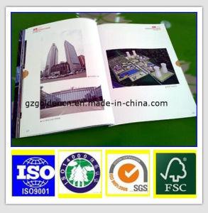 Best Sale Virgin Wood Pulp Colour Offset Paper pictures & photos