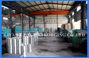 Pellet Die Ring Die Mill Die for Wood Pellet Mill
