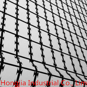 Welded Razor Wire Mesh (BTO-22, BTO-30)