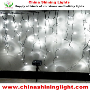 IP44 IP65 Ce RoHS SAA UL Standard LED Solar Panel Icicle Lights pictures & photos