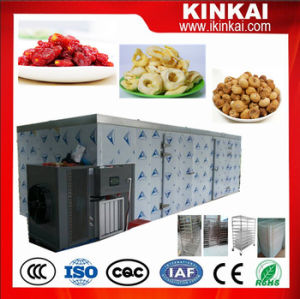 Vegetable Drying Machine/ Dryer for Mushroom pictures & photos