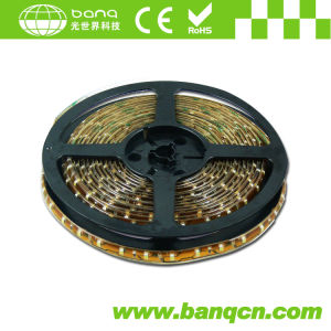 DC24V 60pcs/m 3528 SMD LED Strip Light