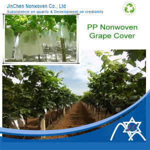 Spunbond Nonwoven Fabric for Fruit Cover pictures & photos