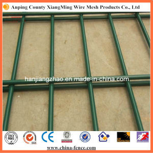 Quality Welded Powder Coated Steel 656 Double Wire Mesh (XMM-WM1) pictures & photos