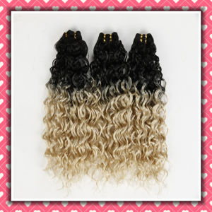 Hot Two Tone Brazilian Hair Weaving Curly Hair 18inches pictures & photos