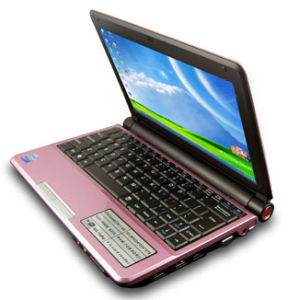 Lady Mini Netbook Personal Computer (N01M)