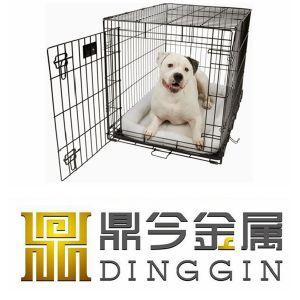 Cocker Spaniel Dog Pet Home pictures & photos