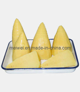 Hot Selling Canned Whole Bamboo Shoots pictures & photos