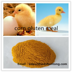Corn Gluten Meal for Poultry with Lowest Price pictures & photos