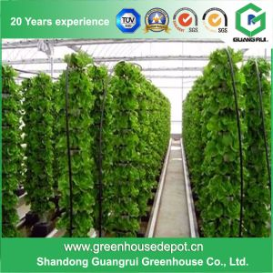 Best Price PC Panels with Hydroponic System Hollow PC Sheet Greenhouse pictures & photos