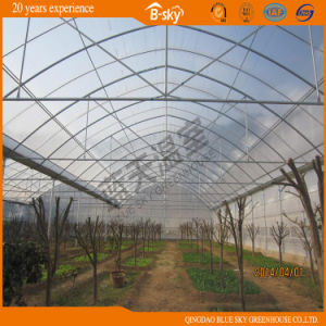 High Cost Performance Arch Structure Multi-Span Film Greenhouse pictures & photos