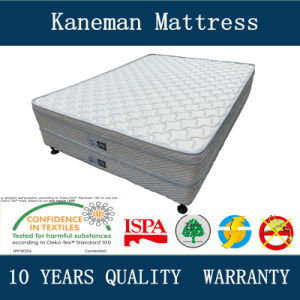 Durable Hotel Spring Box Bed Base and Mattress pictures & photos