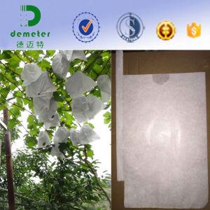 Contra Bacterias Impermeable Empaquetado De La Fruta Papel Bolso De La UVA pictures & photos