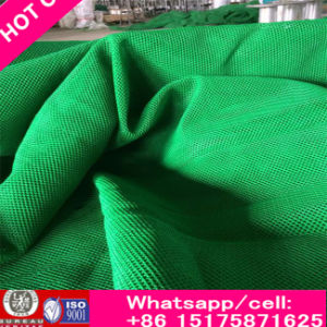 High Quality Flexible Wind Dust Fence Net (manufactory) pictures & photos
