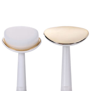 Toothbrush/Massager/Cleansing Brush Beauty Machine Wy-1002 Ce/RoHS/FDA Approved pictures & photos