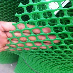 China Factory Supply High Quality Plastic Net pictures & photos