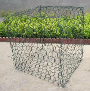 Hot Dipped Galvanized Gabion Hexagonal Wire Mesh pictures & photos