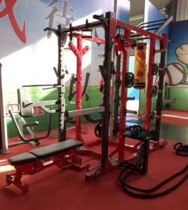 Hammer HD Elite Power Rack pictures & photos