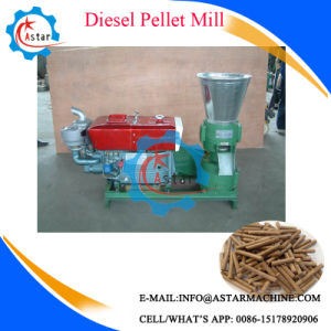 Home Use Small Flat Die Pellet Mill pictures & photos