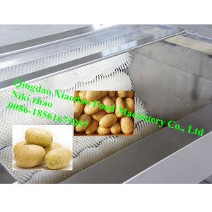 High Capacity Potato/Onion Washing and Peeling Machine pictures & photos