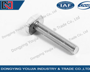 GB37 Stainless Steel Hexagon T Head Bolt pictures & photos