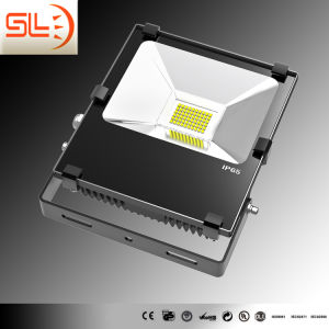 Driverless (DoB) Technology LED Floodlight with CE pictures & photos