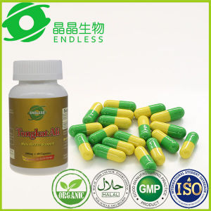 Herb Supplement Green World Tongkat Ali Capsule pictures & photos
