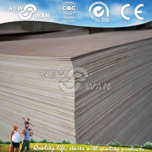 Cheap 3mm/3.6mm Plywood Door Skin / Door Size Plywood pictures & photos