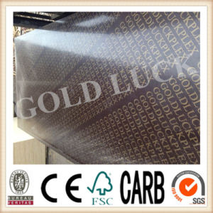 Qingdao Gold Luck Film Faced Plywood Factory pictures & photos