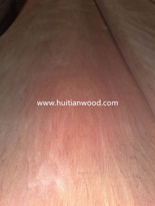 Natural Red Bintangor Veneer for Furniture Plywood pictures & photos