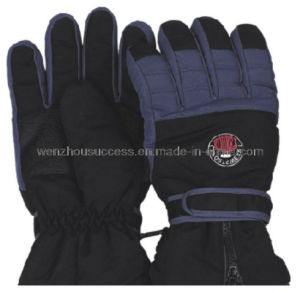Ski Gloves (SH12-2G035) pictures & photos