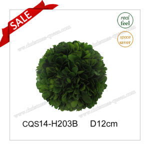 D12cm Fresh Leaves Factory Sale Boxwood Ball pictures & photos
