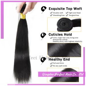 Human Remy Brazilian Silky Straight Hair Weft pictures & photos