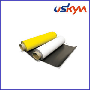 PVC Rubber Magnetic Sheet (F-007) pictures & photos